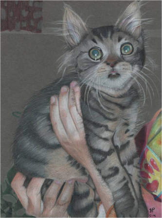 """Gizmo"" colored pencil, 2011"